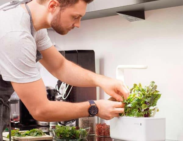 click and go smart garden emsa