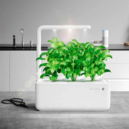 smartgarden emsa pequeño clickand grow