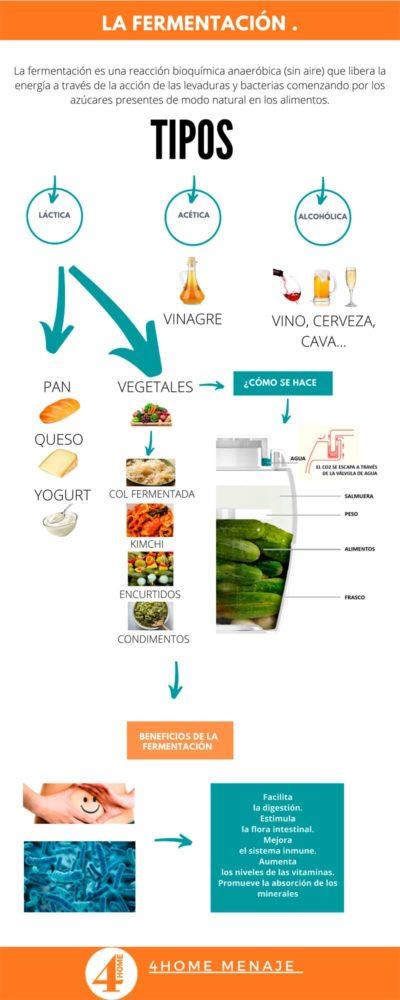 infografia-fermentación-alimentos-fermentados