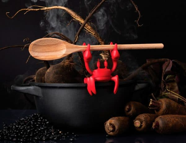Red-spoon-holder-crab-mom-sept2020-animales-en-el-hogar